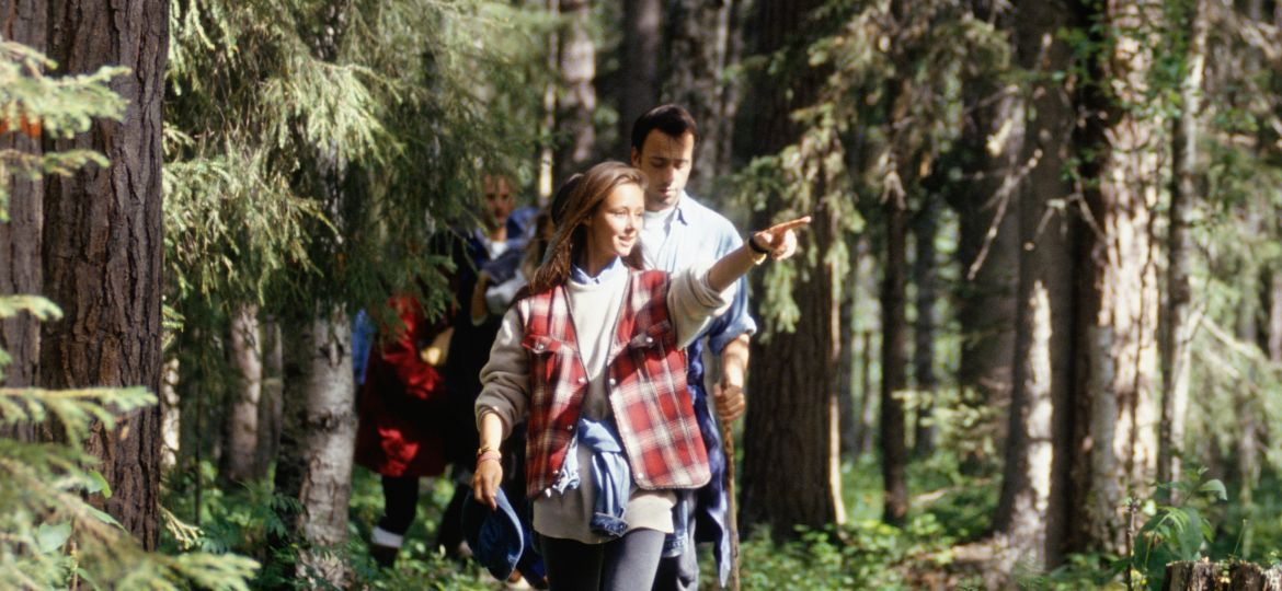 group walk through the forest